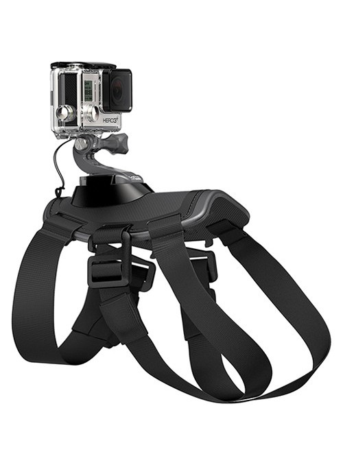 GoPro:- Dog Harness-ADOGM-001