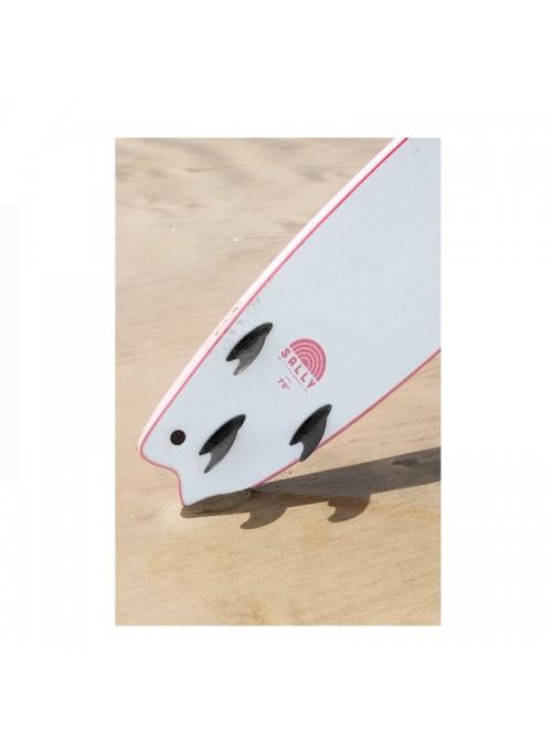 Softech Board Sally...